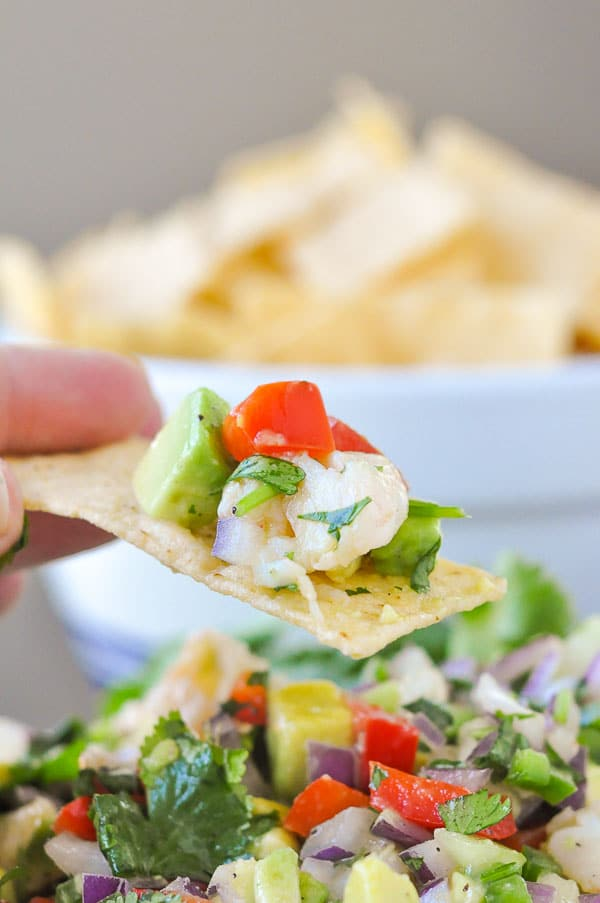 Totally Addictive Shrimp Avocado Salsa uses fresh garden ingredients and easily tosses together to make one surprisingly flavorful and addictive appetizer. http://www.mamagourmand.com