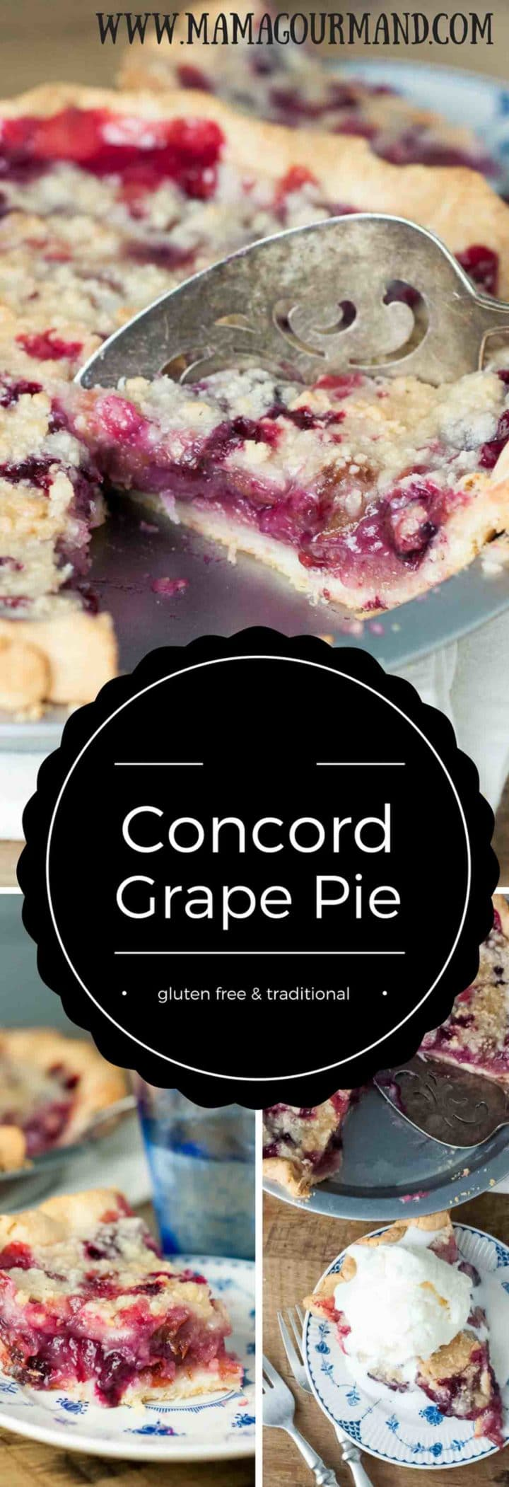 An easy to follow, family recipe for Concord Grape Pie. This Concord Grape Pie is so amazing, I guarantee you have never had anything quite like it before! https://www.mamagourmand.com