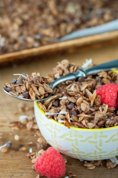 a small bowl of chocolate granola with berries on it