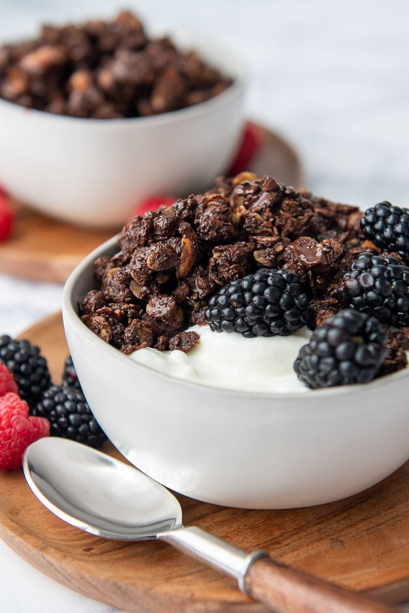 close up shot of chocolate peanut butter granola in a bowl of yogurt with a spoon laying next to it