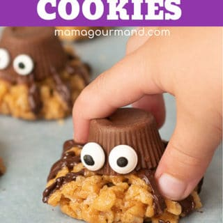 spider cookies pinterest pin