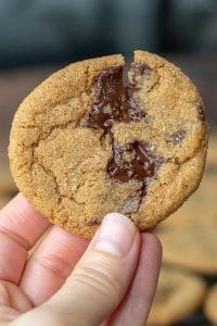 a hand holding up a ginger molasses cookie