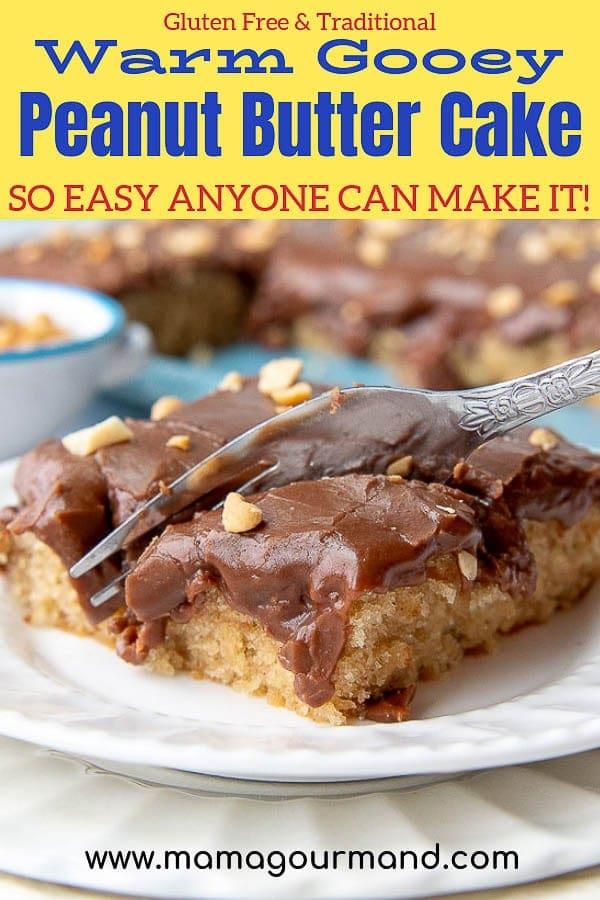 peanut butter chocolate cake pinterest