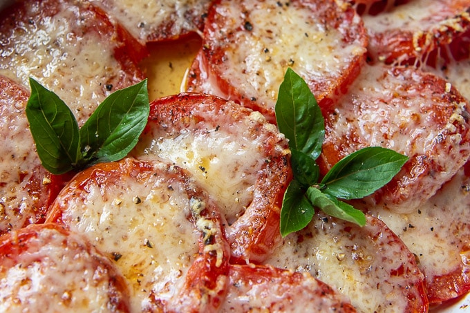 close up of baked tomato slices with parmesan cheese and sprigs of fresh basil